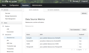 JBoss Console with DataSource